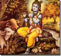 Lord Krishna in Vrindavana