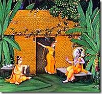 Panchavati cottage