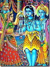Marriage of Lord Shiva and Parvati