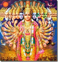 Bhagavan's universal form
