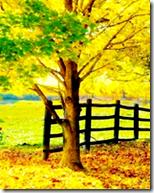 [Tree]
