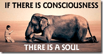 [animals have souls]