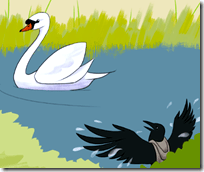 [Swan and crow]