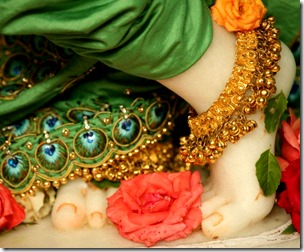 [Krishna's lotus feet]