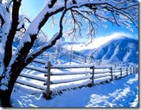 [sunny winter day]