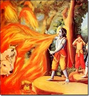 [Krishna forest fire]