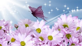 3d-abstract_hdwallpaper_summer-shines-on-flowers_37894