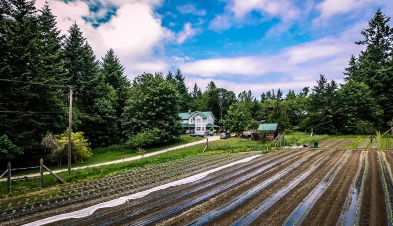 Farm aerial photography changing seasons