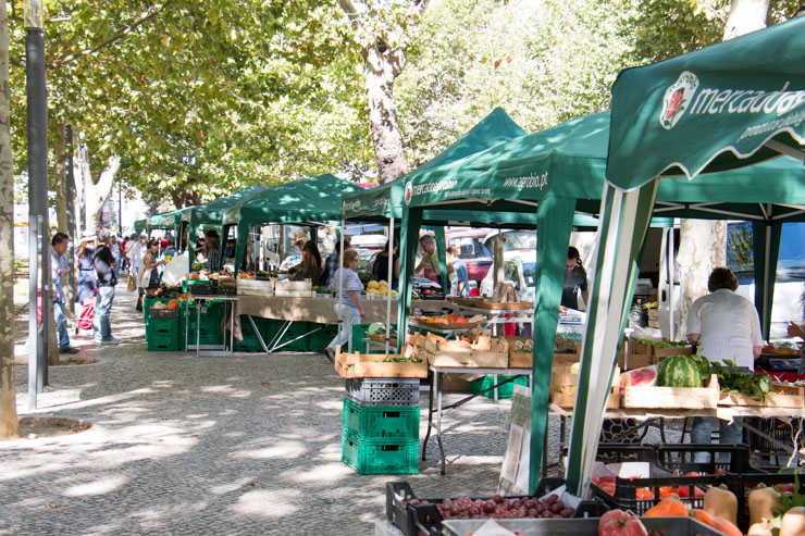 shop sustainable on a local farmers market - sunny day
