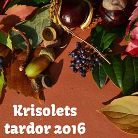 Krisolets Blog Tardor 2016