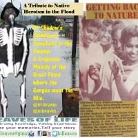 Calypso Tribute to Swamp Heroism