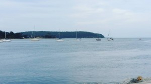 batemans-bay-2