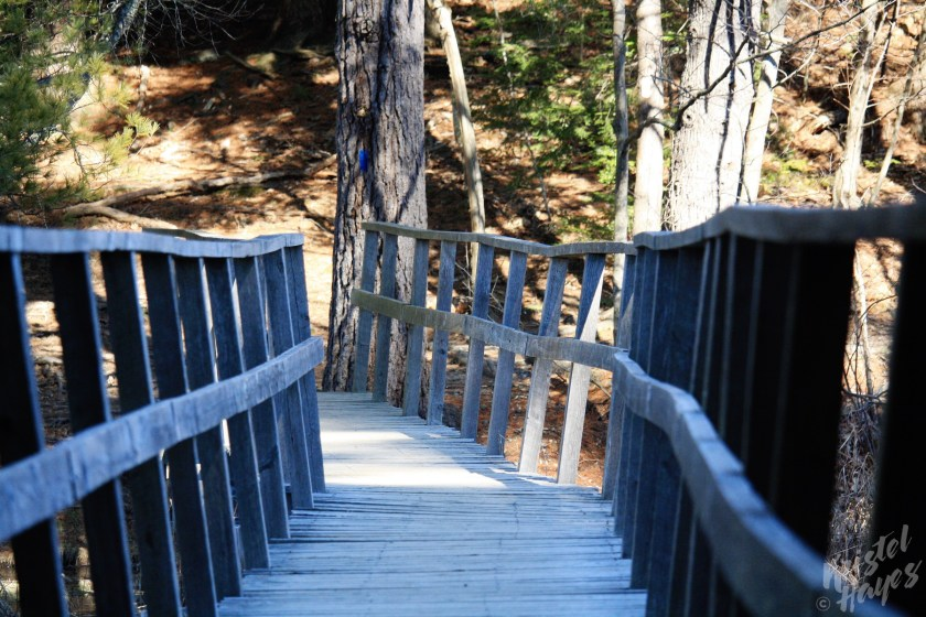 Bridge at Fore River Sanctuary