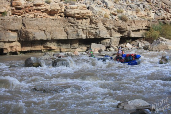San Juan River: Scot & Rich at Government Rapid