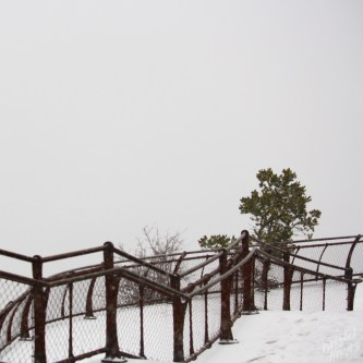 View of the Grand Canyon During Snowstorm