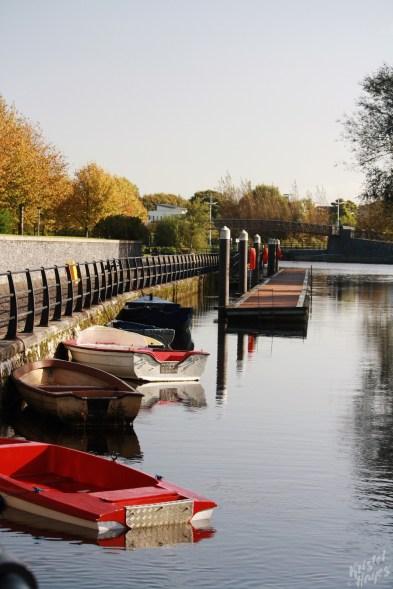 Carlow Town Dock-River Barrow, Ireland