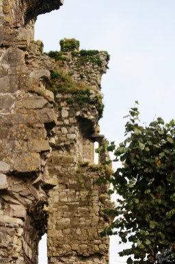 Crumbling Walls Carlow Castle-River Barrow, Ireland