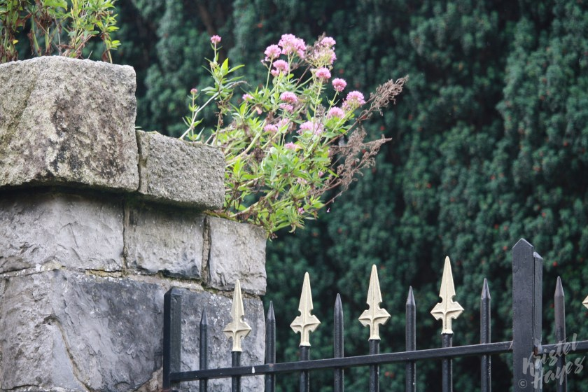 Gates Around Officers' Burial Ground Near IMMA, Dublin