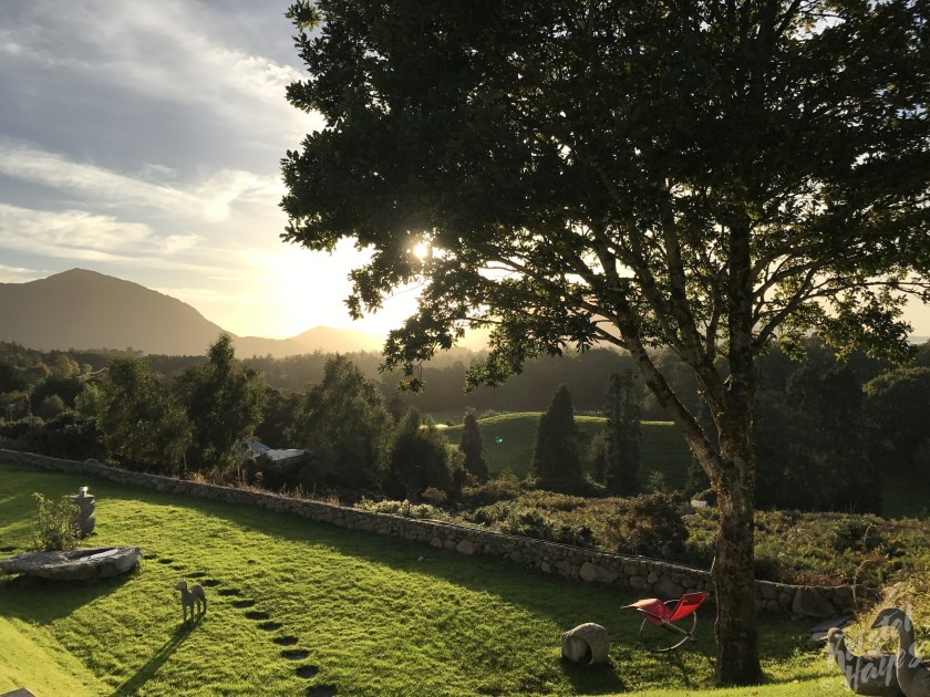 View From AirBnB-Killarney National Park, Ireland