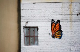 NOLA | Warehouse District | Butterfly Graffiti