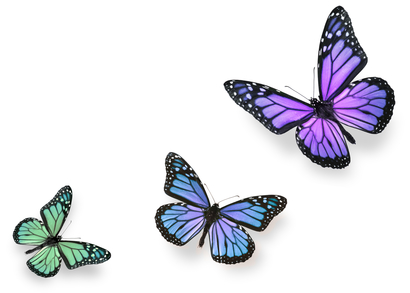 Green Pink and Blue Butterflies Isolated on White