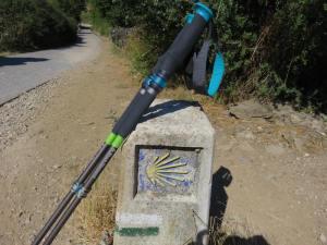 Camino Experience Kristen Shane 1 gear