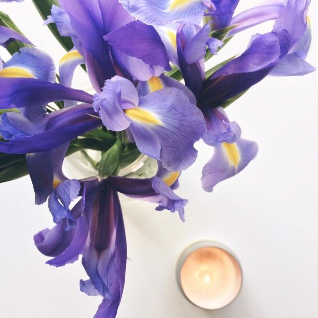 Irises_Candle