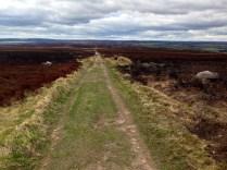Amazing Yorkshire Moors