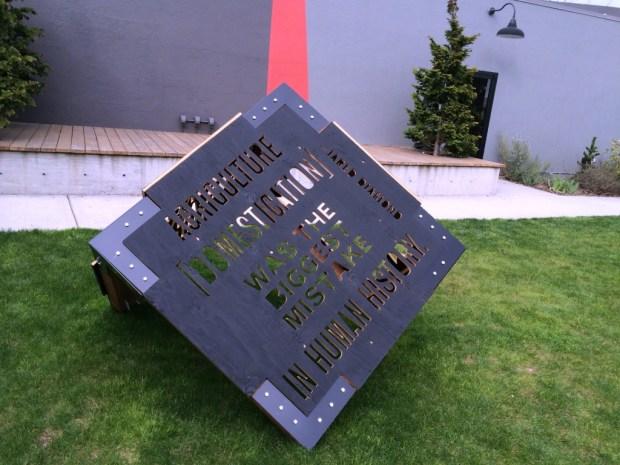 disjecta cube