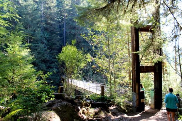 Drift Creek Falls 2