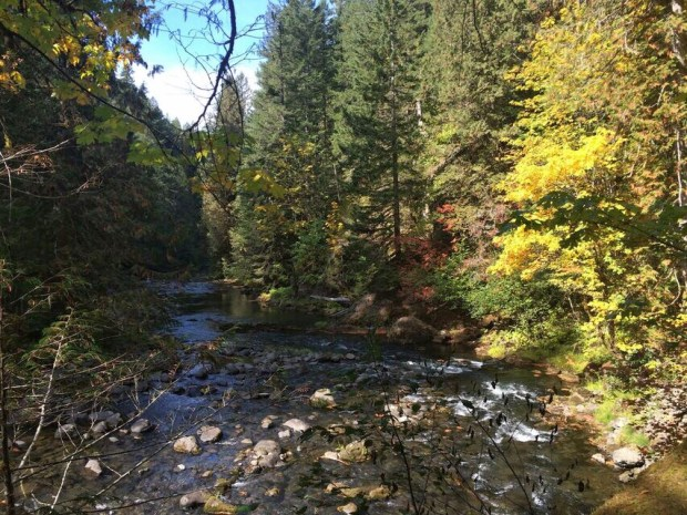 Old Salmon river view autumn