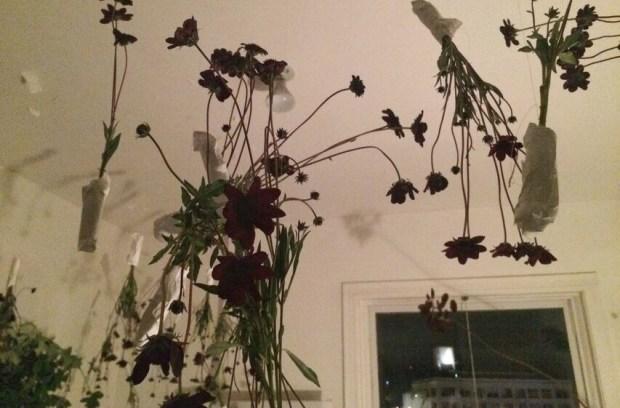 Content2015 flower ceiling