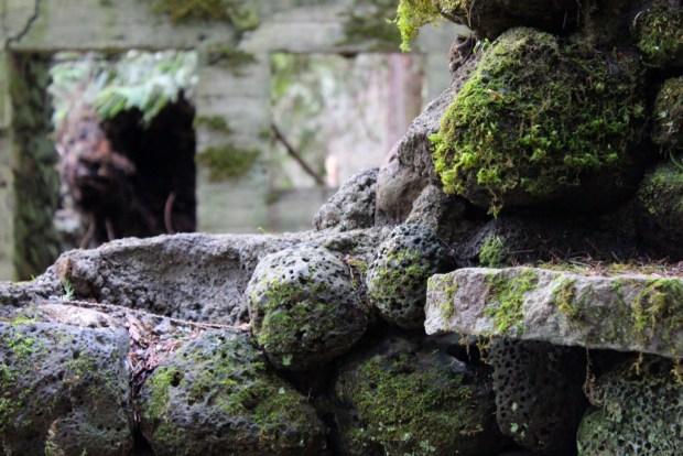 skamania stone house moss shelf