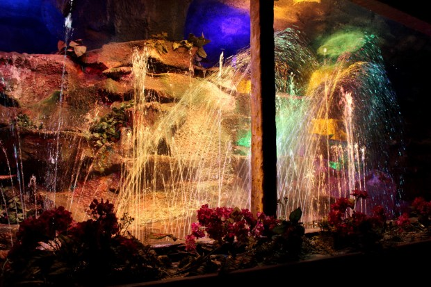 enchanted-forest-fantasy-fountains