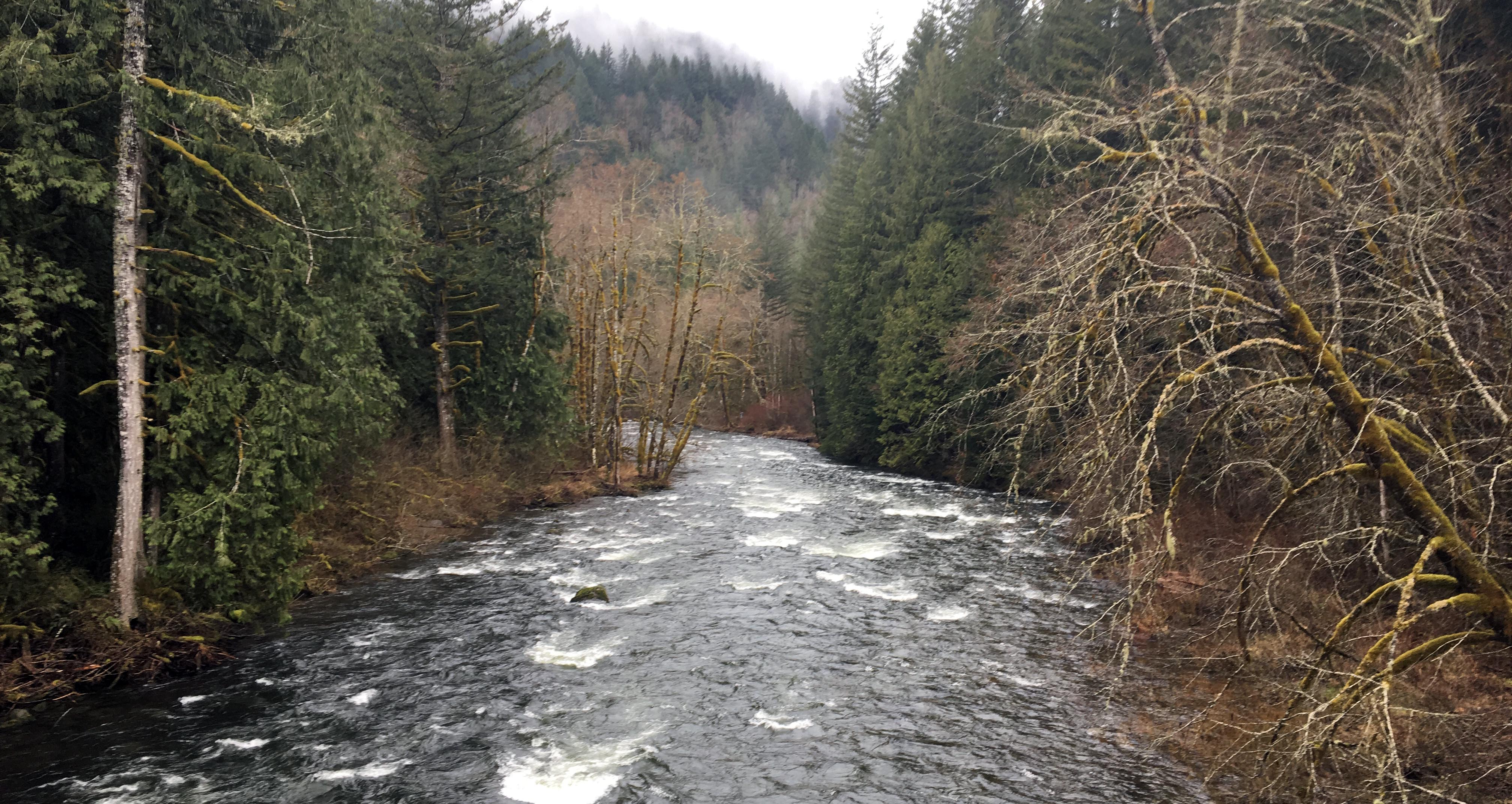 Wildwood Rec Area Riverview