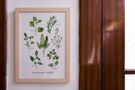 Wall print of kitchen herbs on kitchen wall