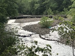 Bryce's handiwork in the river.