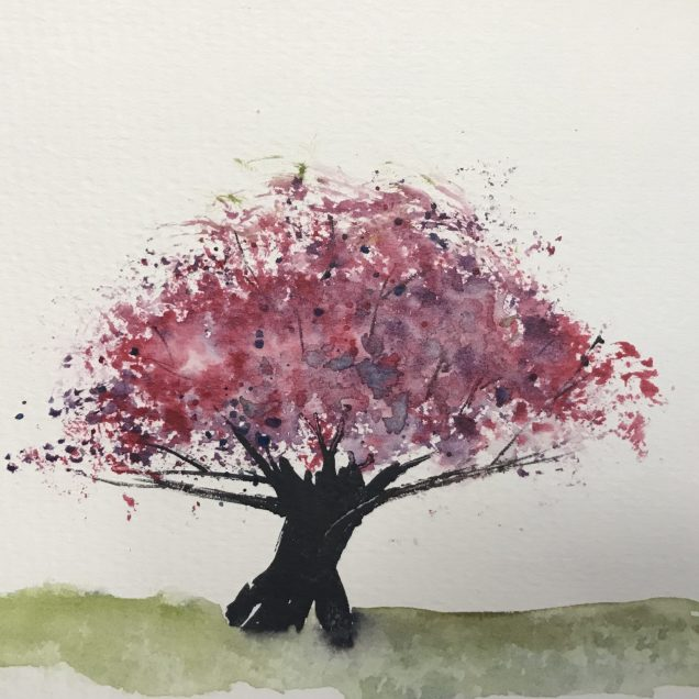 A spring cherry tree.