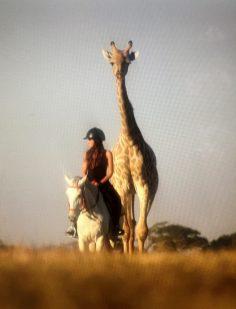Wildlife and travel Tv Show host on horseback safari