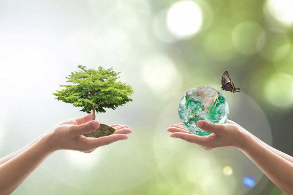 Bewusstsein, Energiearbeit und Klimaveränderung - Ein Artikel von Kristina Hazler