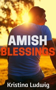 You voted, we listened... Here's the Amish Blessings cover reveal.
