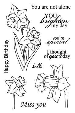 daffodils__86148_1462485903_1280_1280