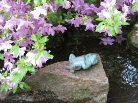 6 juni 15 ta trädgård 20