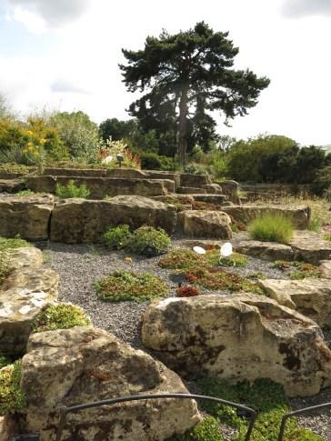 30 juli 15 Kew rock garden 9