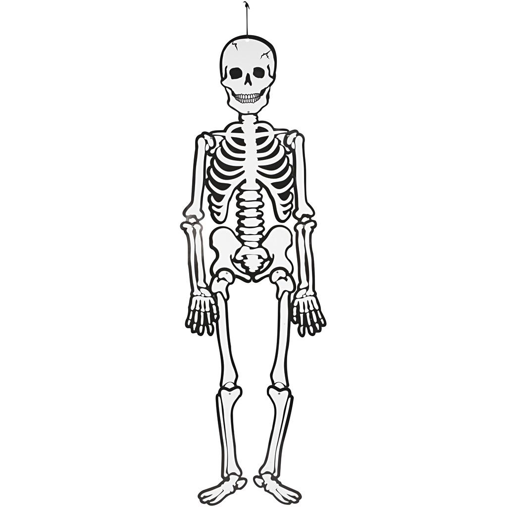 Sjalvlysande Skelett I Vit Kartong