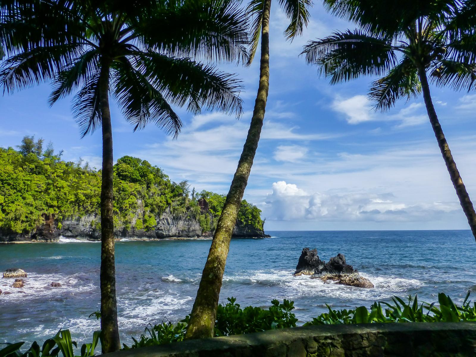 3 week Hawaii itinerary. Tropical Botanical Garden