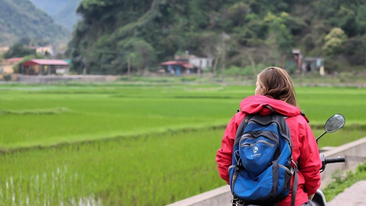 Vietnam Travel Tips. Travel costs in Vietnam