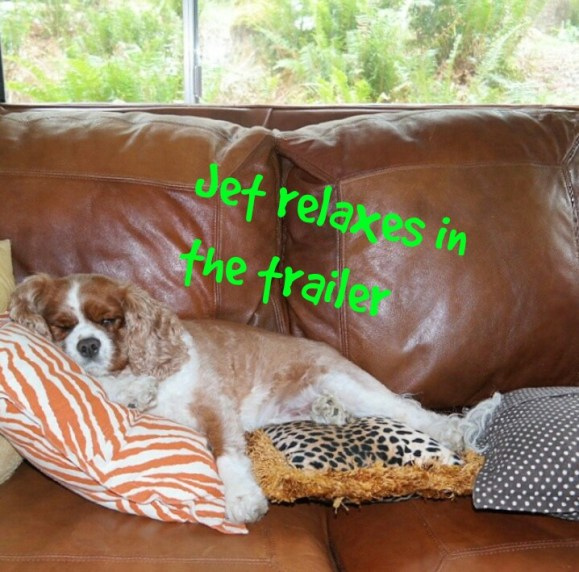 Jet relaxes inside the trailer -