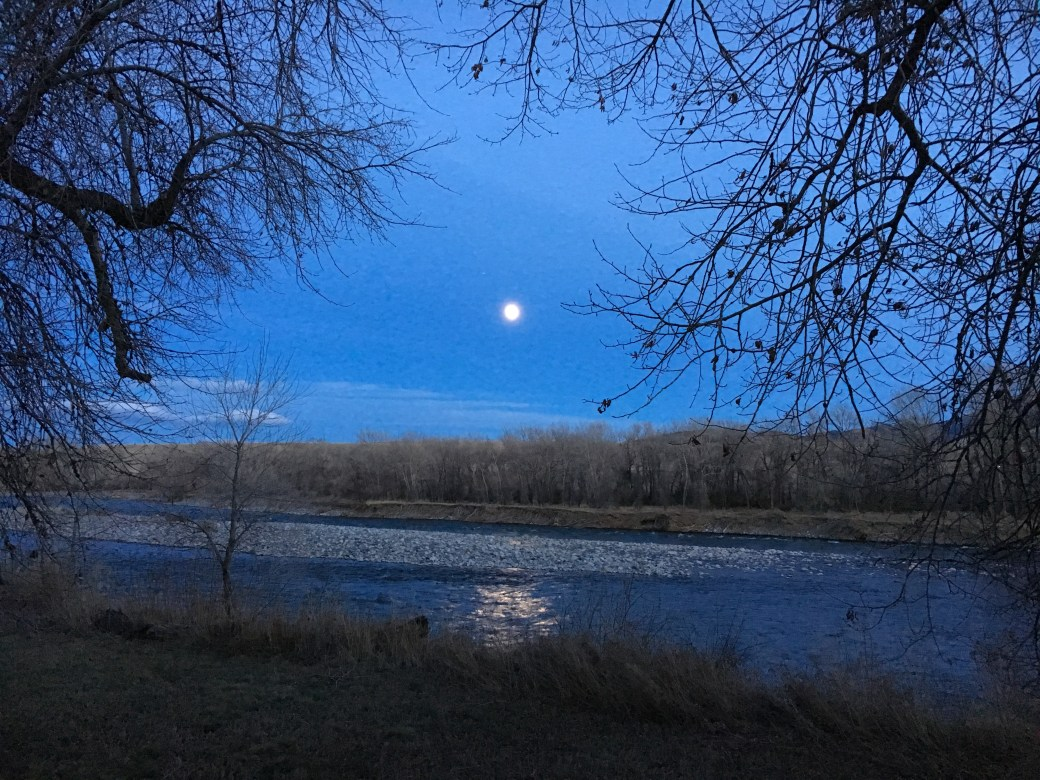 Moon over the Yellowstone