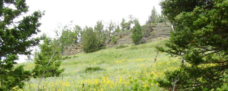Elk meadow cliffs